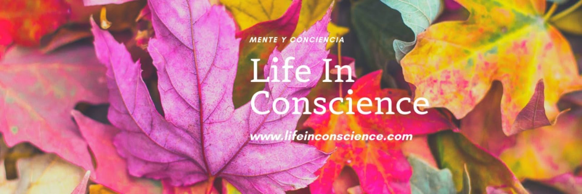 LIFE IN CONSCIENCE